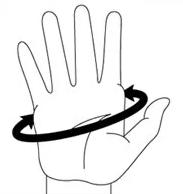 как определить размер перчаток для сноуборда